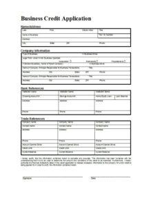 Credit Application Form 01
