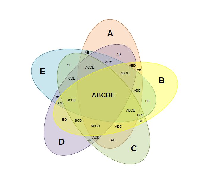 venn diagram template 19